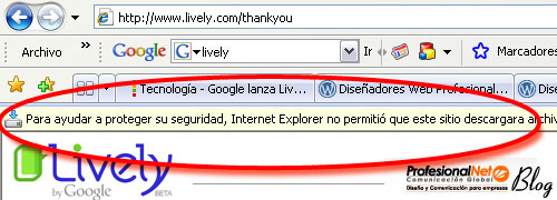 Instalar Google Lively - Segundo paso.