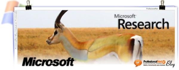 microsoft-gazelle